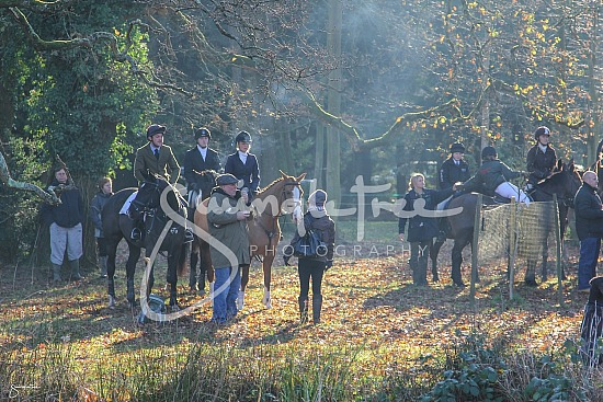 The New Forest Foxhounds meeting at Ipley Manor in 2012.