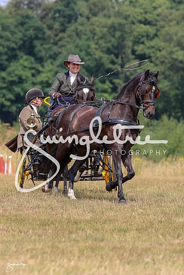 WPEC 21 - 22 July 2018 - Fourth Meet - Galleries - Carriage